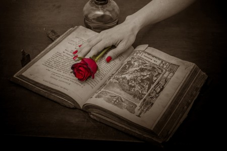 prayer_book_rose_red_rose